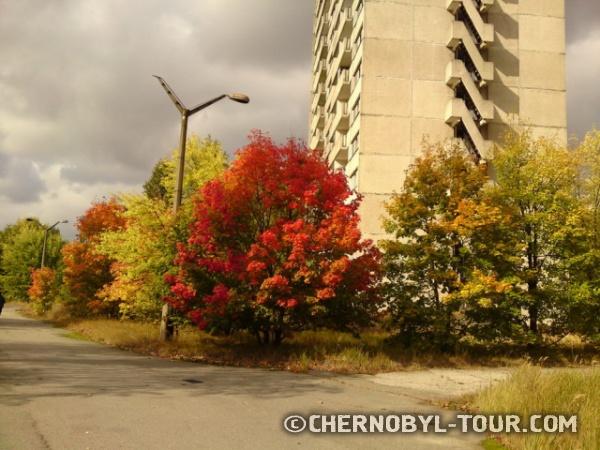 Осенняя Припять
